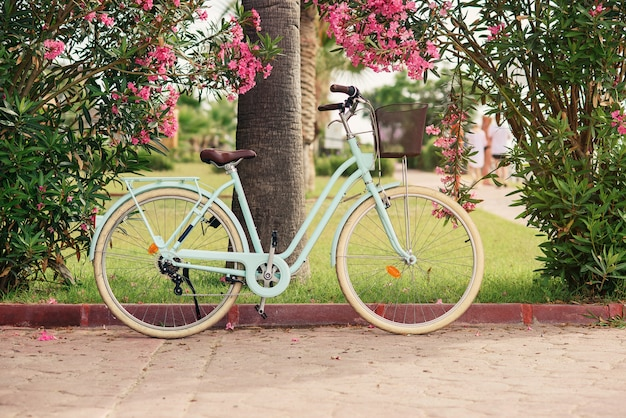 花と緑の茂みの近くのヴィンテージの女性の自転車 Premium写真