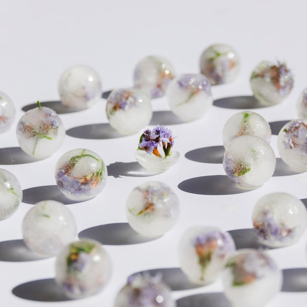 Violet florets in ice balls Free Photo