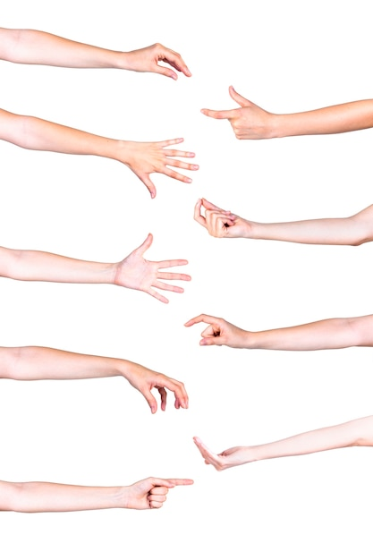 Vivid human hand gestures over white background Free Photo