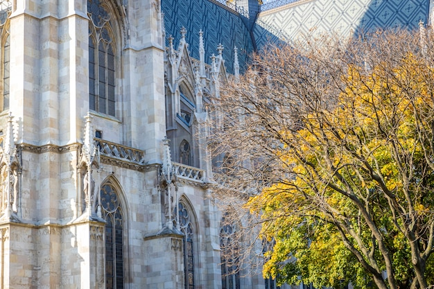 Votivkirche знаменитый готический фасад церкви в вене, австрия Premium Фотографии