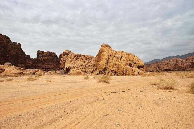 Wadi disah、alshaq峡谷サウジアラビア Premium写真