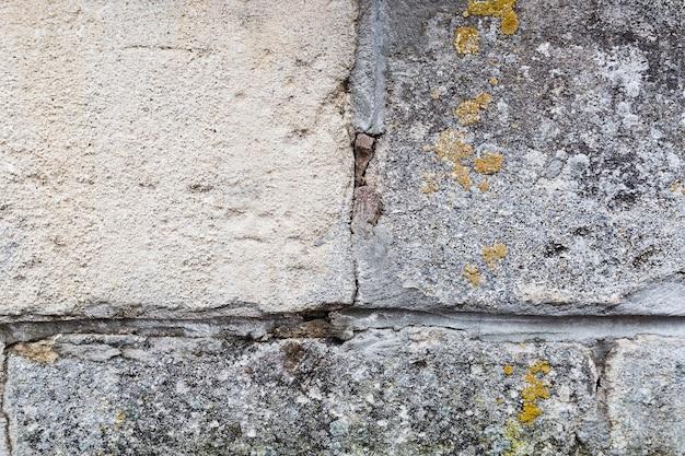 石と苔の壁面 無料写真