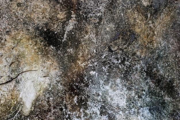 Текстура стены с поврежденной краской, полной плесени Premium Фотографии