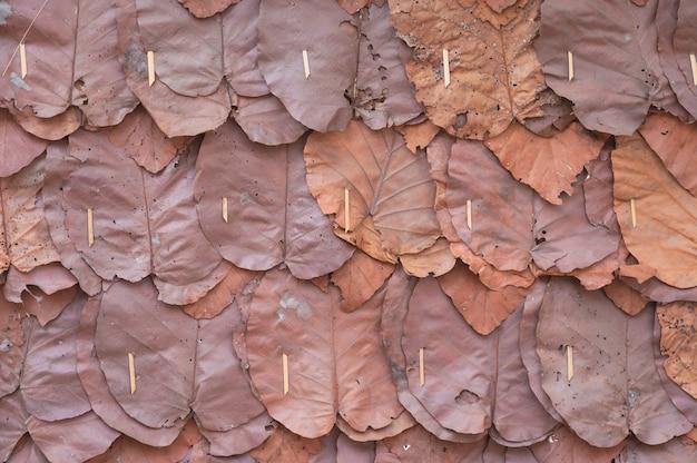 티크 잎으로 만든 벽, 코티지의 전통적인 벽에 장식용 마른 잎의 클로즈업 및 질감 프리미엄 사진