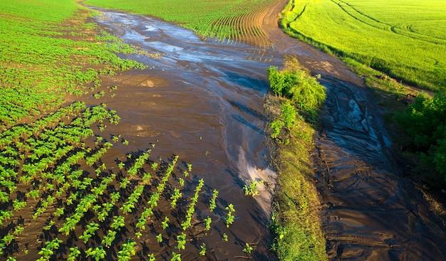 Water erosion of the soil Premium Photo