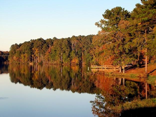 Water Fall Landscape Lake Scenery Nature Tree Photo