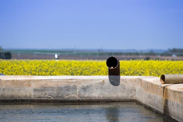 Water for irrigation Premium Photo