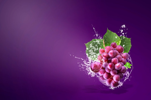 Water splashing on fresh red grapes over purple Premium Photo