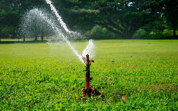 Water sprinkler in the park Premium Photo