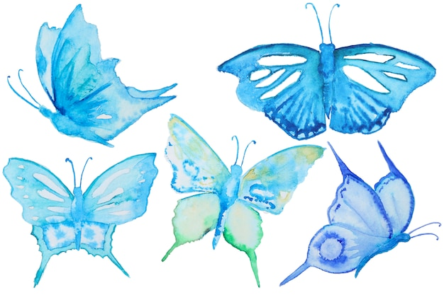 Watercolor blue butterflies set isolated on white Premium Photo