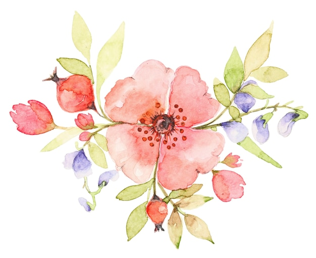 Watercolor bouquet of wildflowers. pink rose dog flower with berries. botanical spring composition Premium Photo