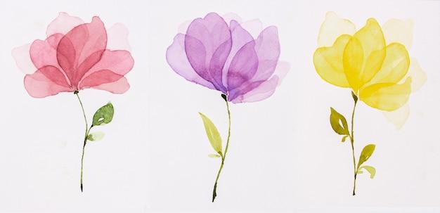 Акварельные цветы Premium Фотографии