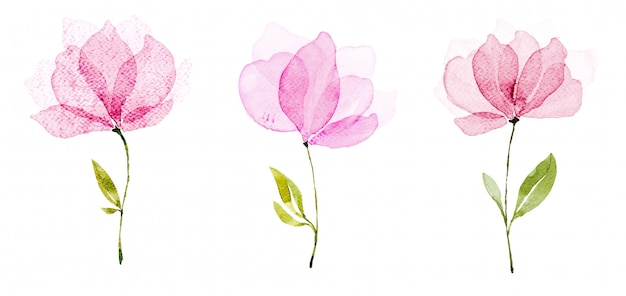 Watercolor flowers Premium Photo