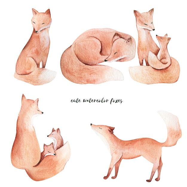 Watercolor foxes Premium Photo