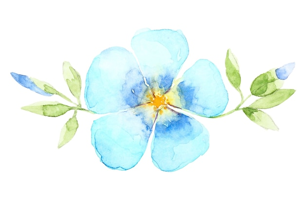 Watercolor hand drawn blue flower isolated on white background Premium Photo