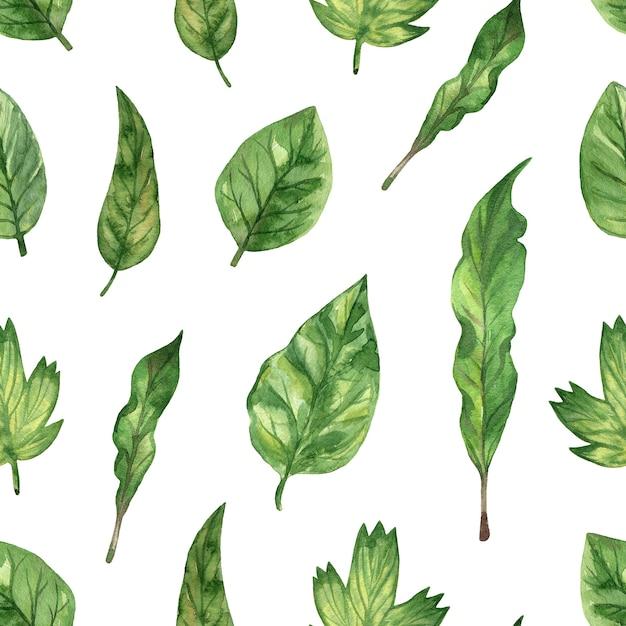 水彩手描きイラスト。緑の新鮮な葉とのシームレスなパターン。 Premium写真