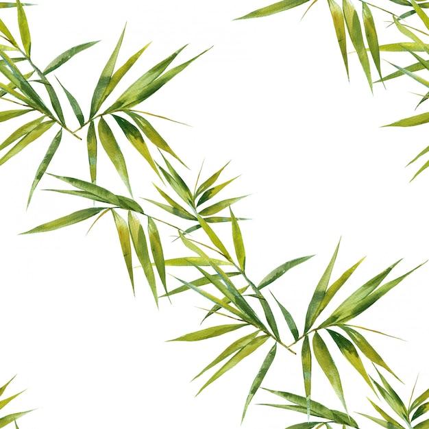 Watercolor illustration of bamboo leaves Premium Photo