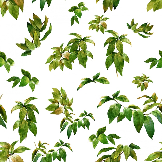Watercolor illustration of leaf, seamless pattern on white Premium Photo