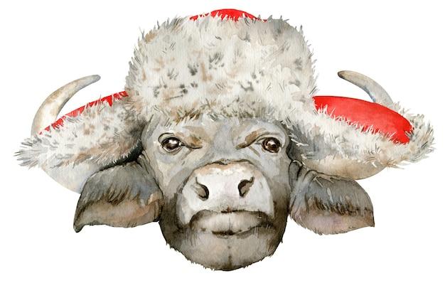 クリスマスの毛皮の帽子の黒いアフリカスイギュウの頭の水彩イラスト。 Premium写真