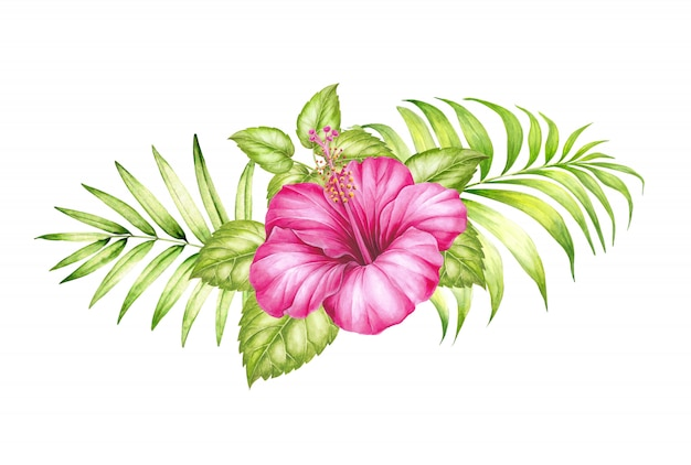 Watercolor illustration of tropical hibickus flower and palm leaves. Premium Photo