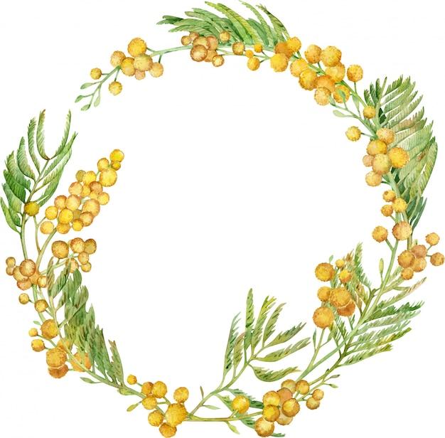 Акварельный венок мимозы. желтая весенняя цветочная рамка. рисованной иллюстрации Premium Фотографии