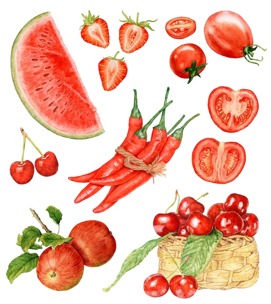 Watercolor red fruit and vegetables isolated. Premium Photo