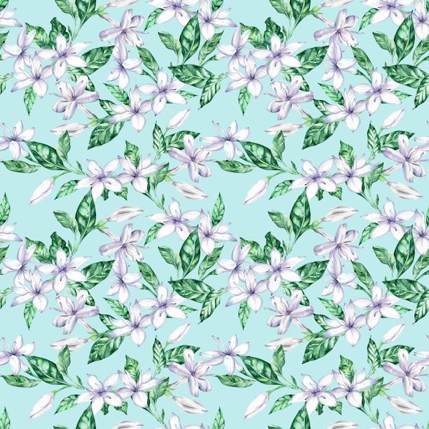 ホワイトコーヒーの花と緑の葉の水彩画のシームレスパターン。 Premium写真