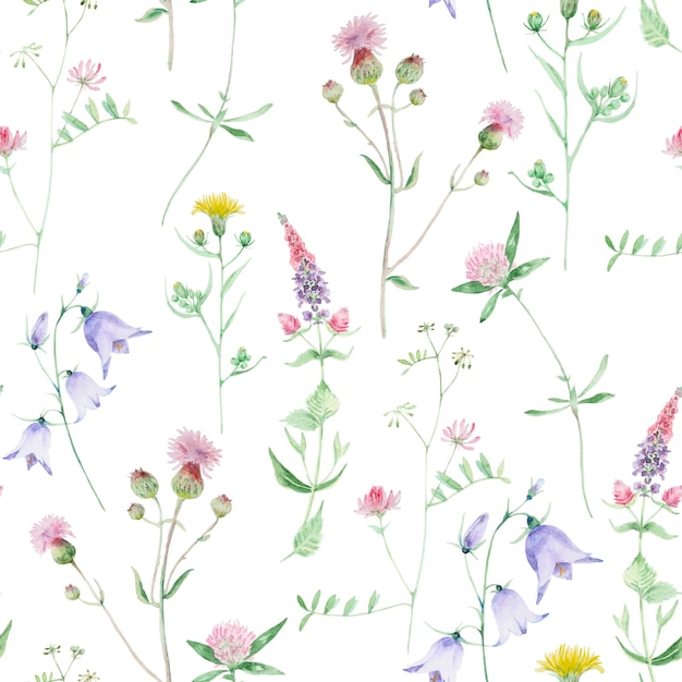 Watercolor wildflower seamless pattern. clover and bell wild flowers. floral hand drawn texture isolated on a white background. Premium Photo