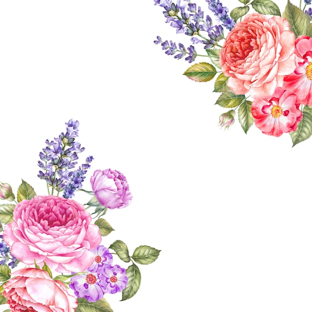 Watercolour botanical illustration. Premium Photo
