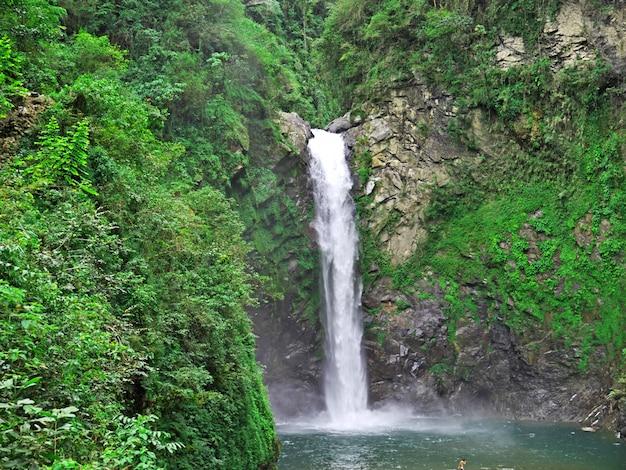 The waterfall in banaue, philippines Premium Photo