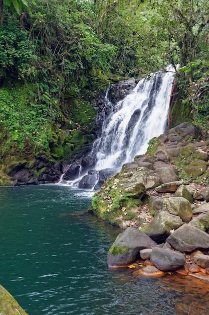 Водопад cascada de texolo в xico, мексика Бесплатные Фотографии