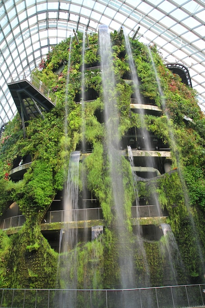 Waterfall the cloud forest dome - garden by the bay at singapore. Premium Photo