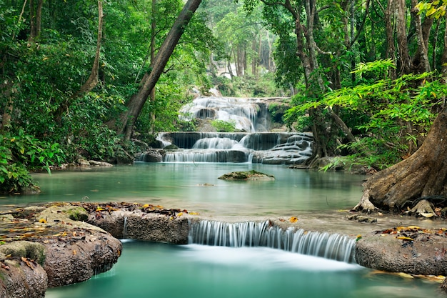 Waterfall in  deep forest on mountain Premium Photo