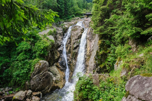 Waterfall in deep forest at mountains Premium Photo