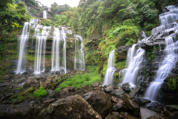 Waterfall in the forest Premium Photo
