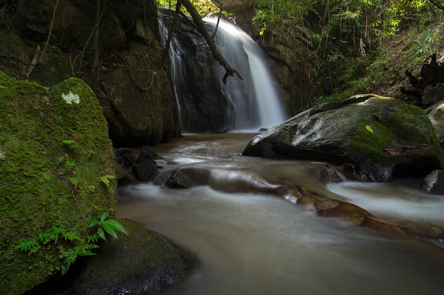 Waterfall Green Forest River Stream Landscape The Beautiful