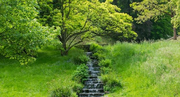Waterfall in green summer park. Premium Photo