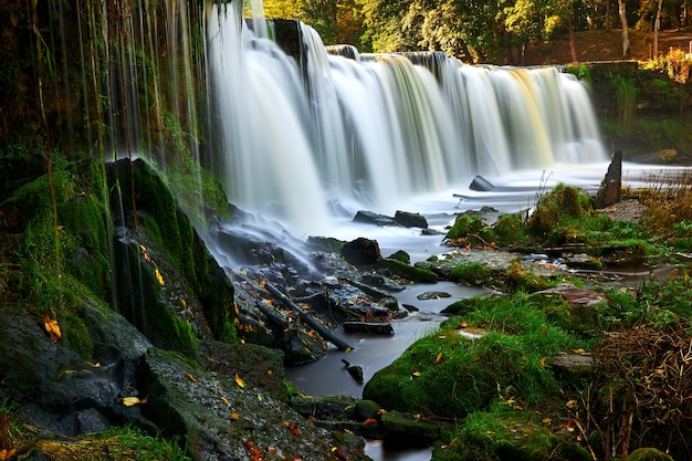 滝ケイラ Premium写真