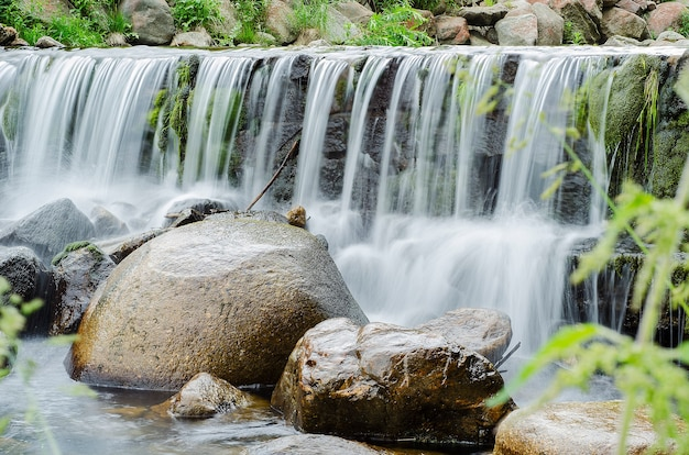 Waterfall on a mountain river in the forest Premium Photo