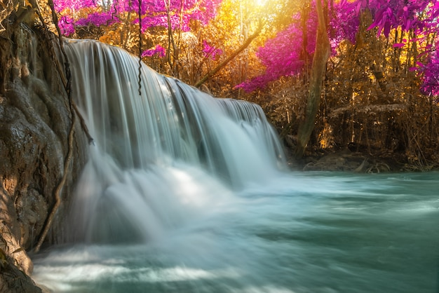 Waterfall nature season spring in forest Premium Photo