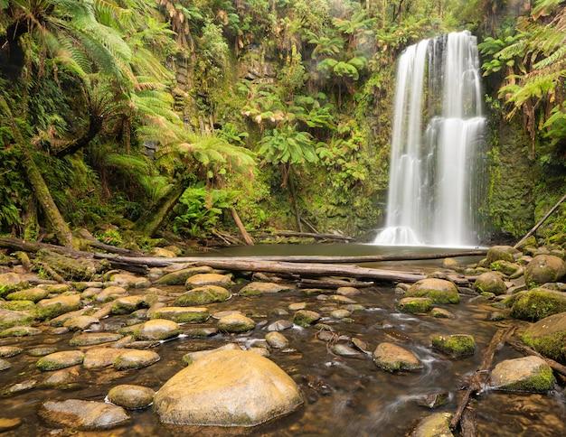 森の中の日光の下で緑と岩に囲まれた滝 無料写真