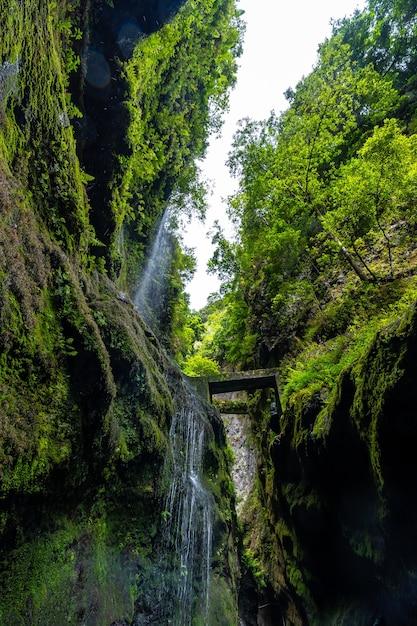 北東海岸のロスティノス自然公園の峡谷にある夏の水が少ない滝 Premium写真
