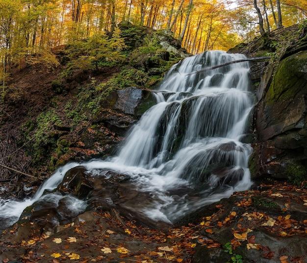 森の中の白いジェットの滝 Premium写真