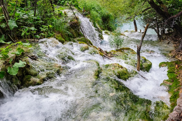 Waterfalls in plitvice lakes national park, croatia Premium Photo