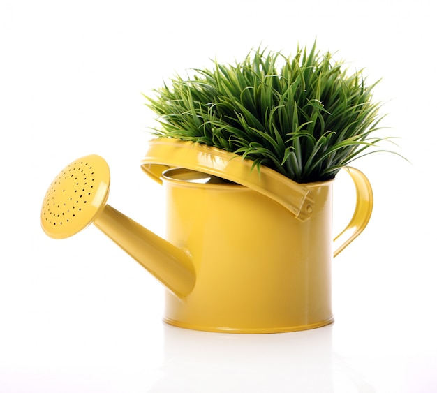 Watering can and grass Free Photo