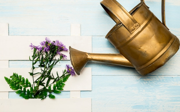 Watering can and purple flowers Free Photo