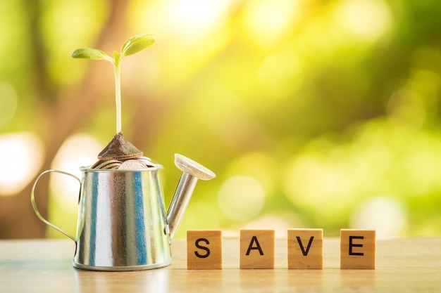Watering can with plant growing and a lot of money, wooden blocks with save word. Premium Photo