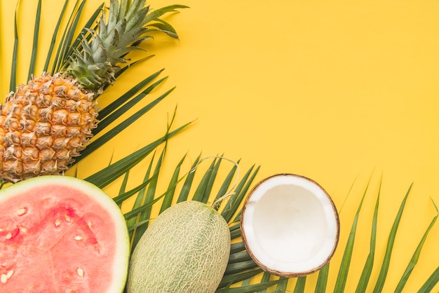 Watermelon melon pineapple coconut and leaves Free Photo