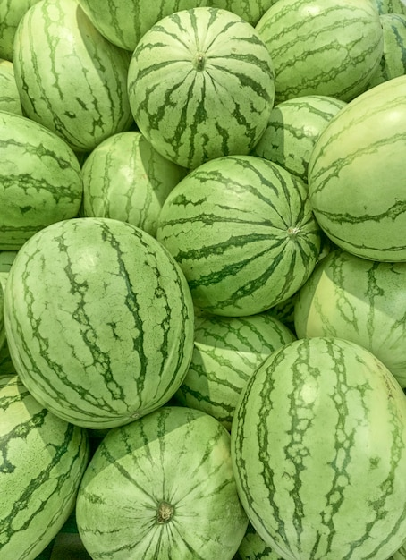 Watermelons for sale in a supermarket from above Premium Photo