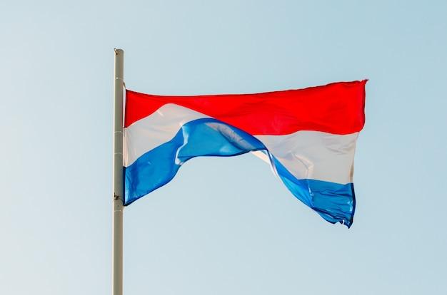 青い空にカラフルなオランダの旗を振っています。 Premium写真